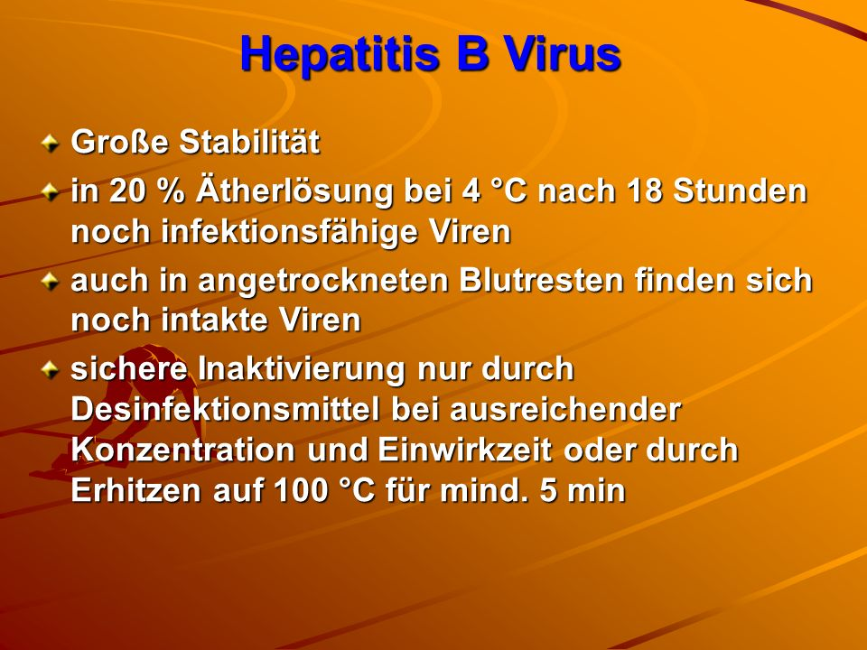 Hepatitis B Virus Große Stabilität