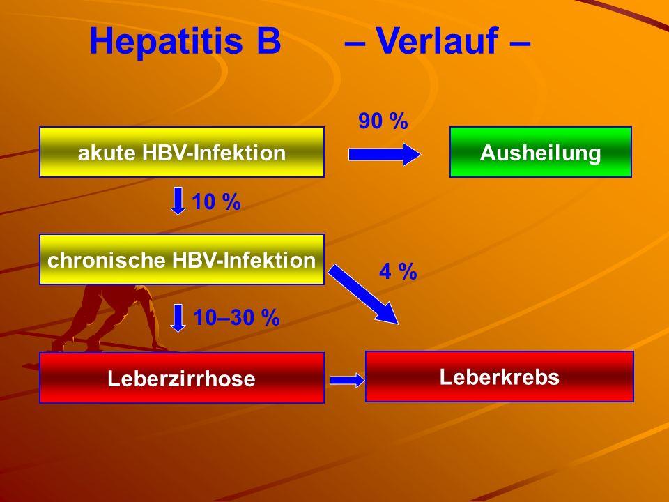 chronische HBV-Infektion