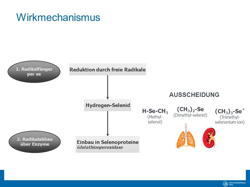 Wirkmechanismus AUSSCHEIDUNG (CH3)2-Se (Dimethyl-selenid)