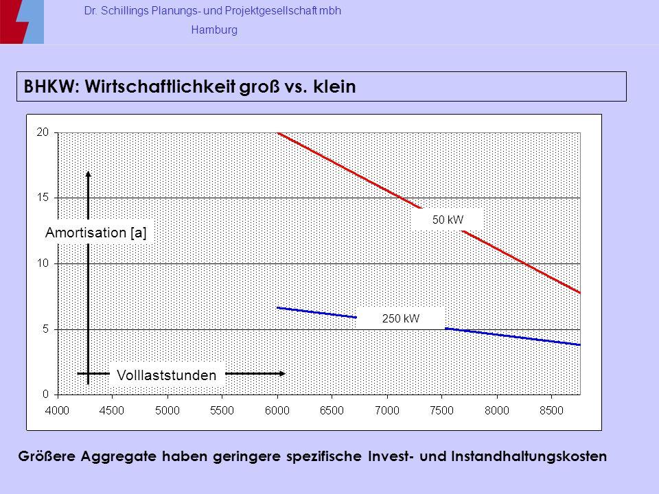 BHKW: Wirtschaftlichkeit groß vs. klein