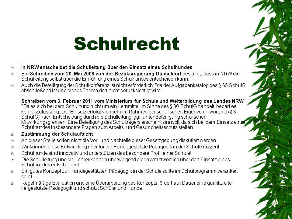 Schulrecht In NRW entscheidet die Schulleitung über den Einsatz eines Schulhundes.
