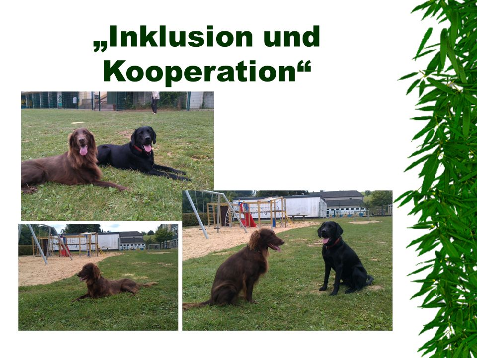 """Inklusion und Kooperation"