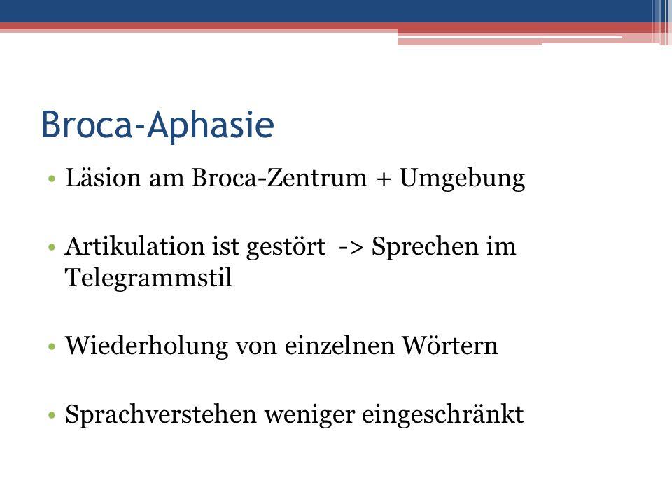 Broca-Aphasie Läsion am Broca-Zentrum + Umgebung