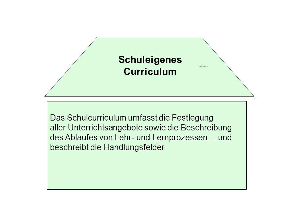 Schuleigenes Curriculum