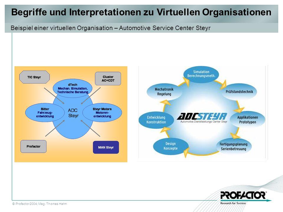 Begriffe und Interpretationen zu Virtuellen Organisationen