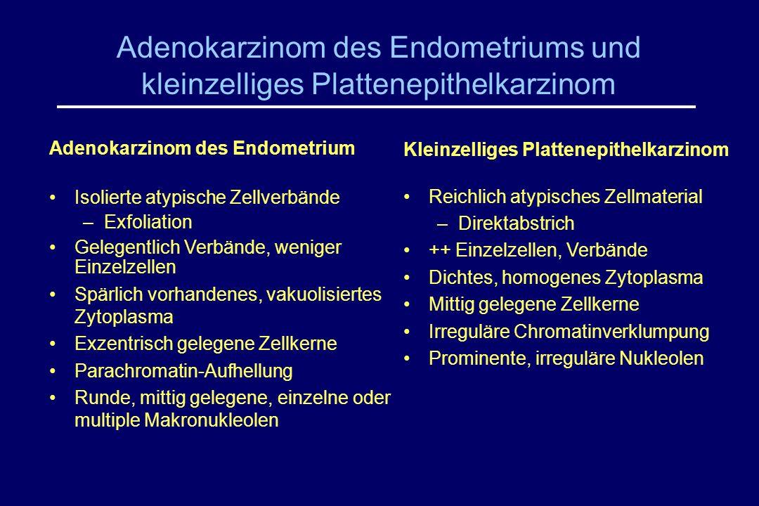 Adenokarzinom des Endometriums und kleinzelliges Plattenepithelkarzinom