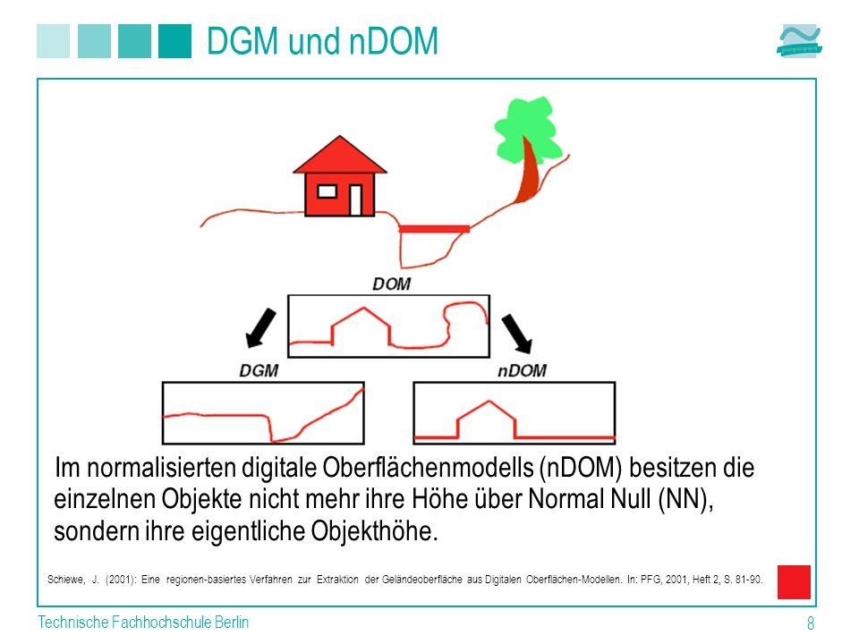 DGM und nDOM