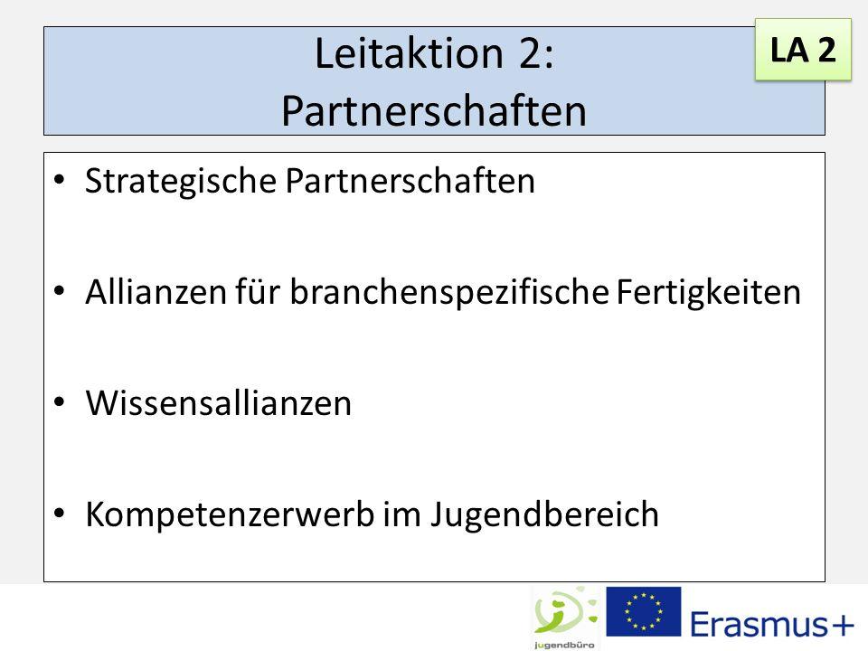Leitaktion 2: Partnerschaften
