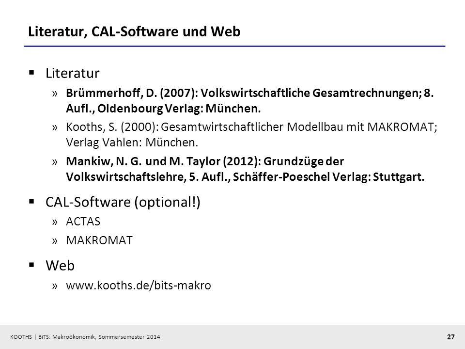Literatur, CAL-Software und Web