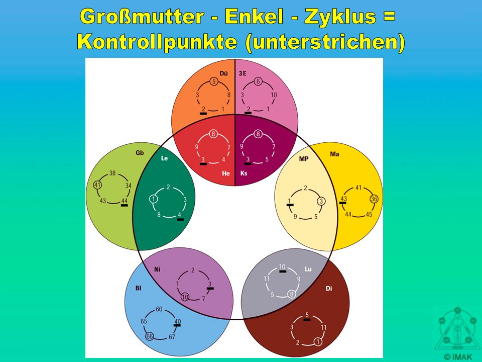 Großmutter - Enkel - Zyklus = Kontrollpunkte (unterstrichen)