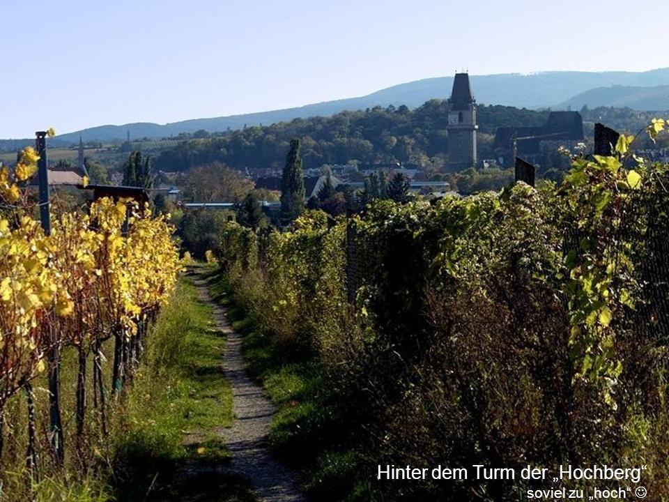 """Hinter dem Turm der """"Hochberg"""