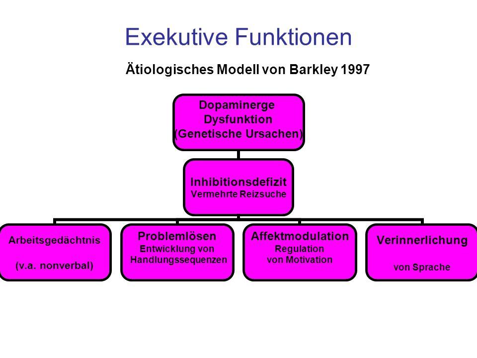 Exekutive Funktionen Ätiologisches Modell von Barkley 1997