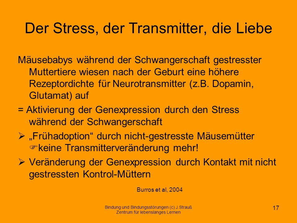 Der Stress, der Transmitter, die Liebe
