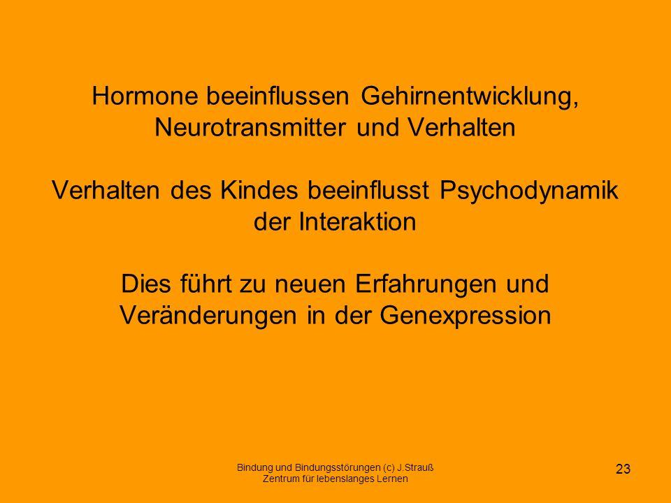 Hormone beeinflussen Gehirnentwicklung, Neurotransmitter und Verhalten Verhalten des Kindes beeinflusst Psychodynamik der Interaktion Dies führt zu neuen Erfahrungen und Veränderungen in der Genexpression