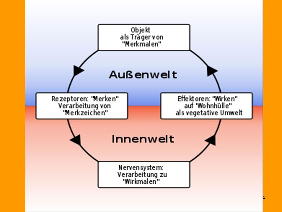 Funktionskreis (v. Uexküll)