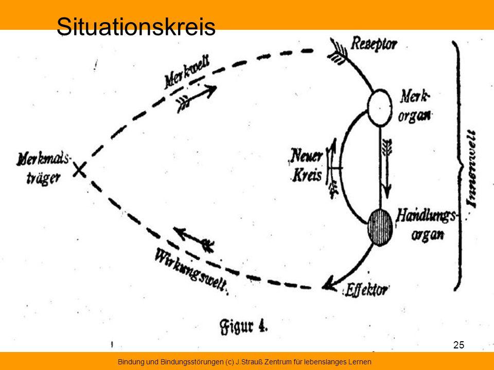 Situationskreis Bindung und Bindungsstörungen (c) J.Strauß Zentrum für lebenslanges Lernen