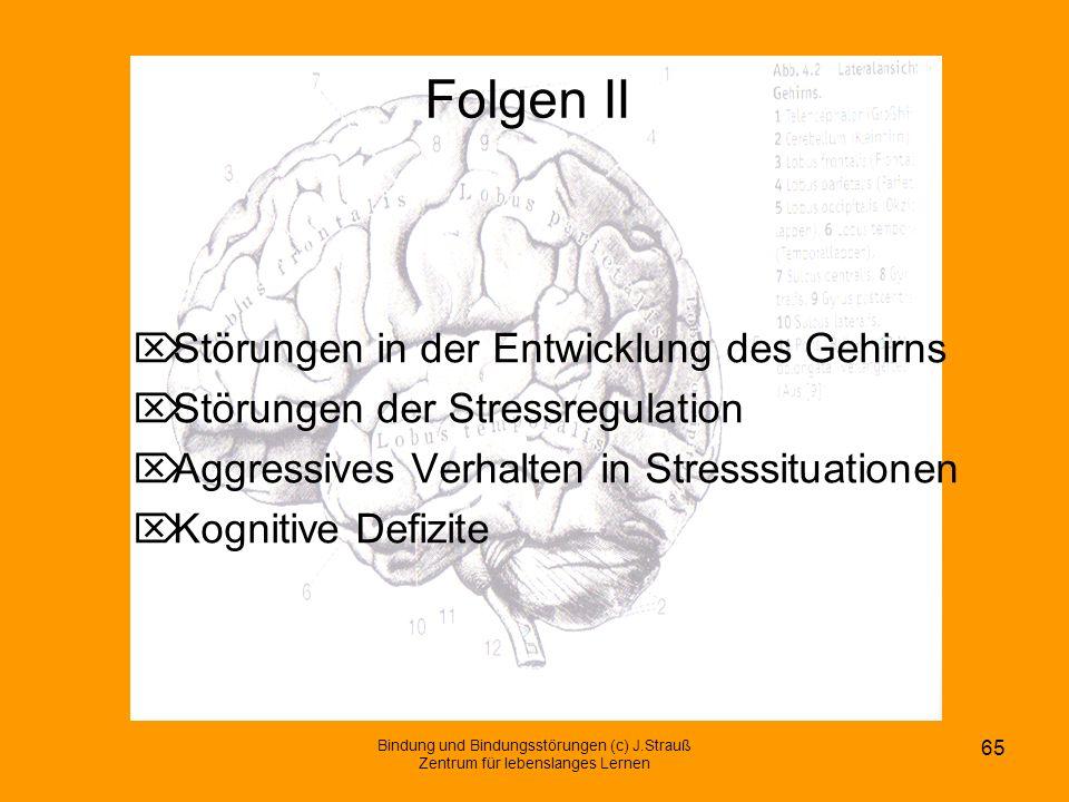 Folgen II Störungen in der Entwicklung des Gehirns
