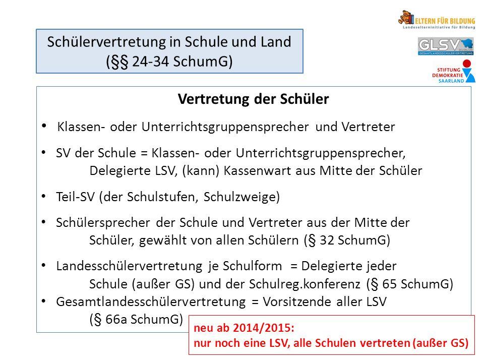 neu ab 2014/2015: nur noch eine LSV, alle Schulen vertreten (außer GS)