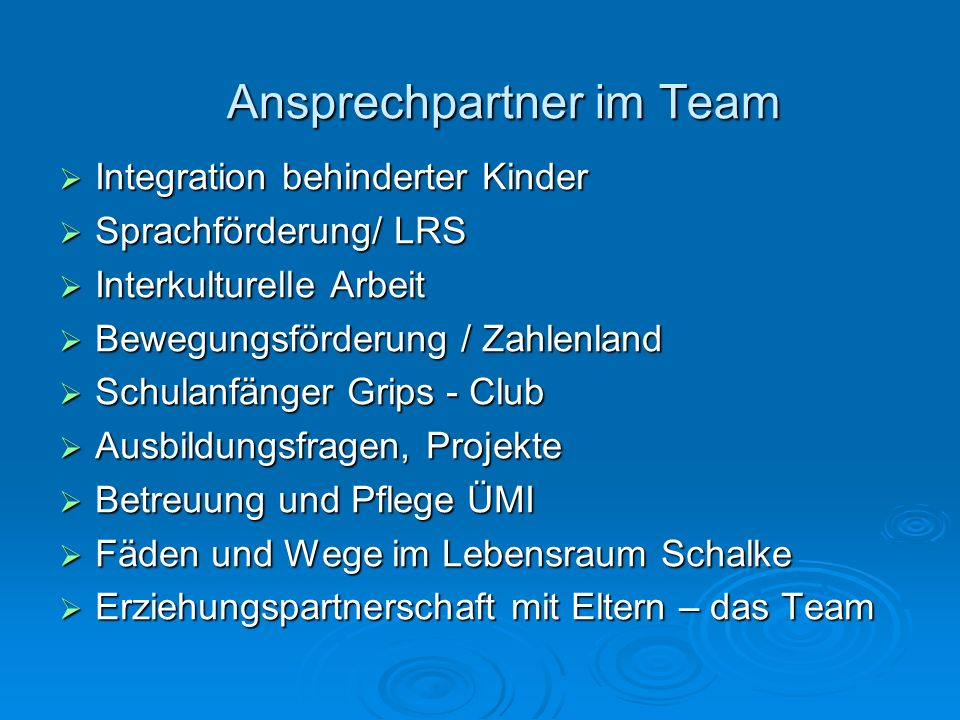 Ansprechpartner im Team