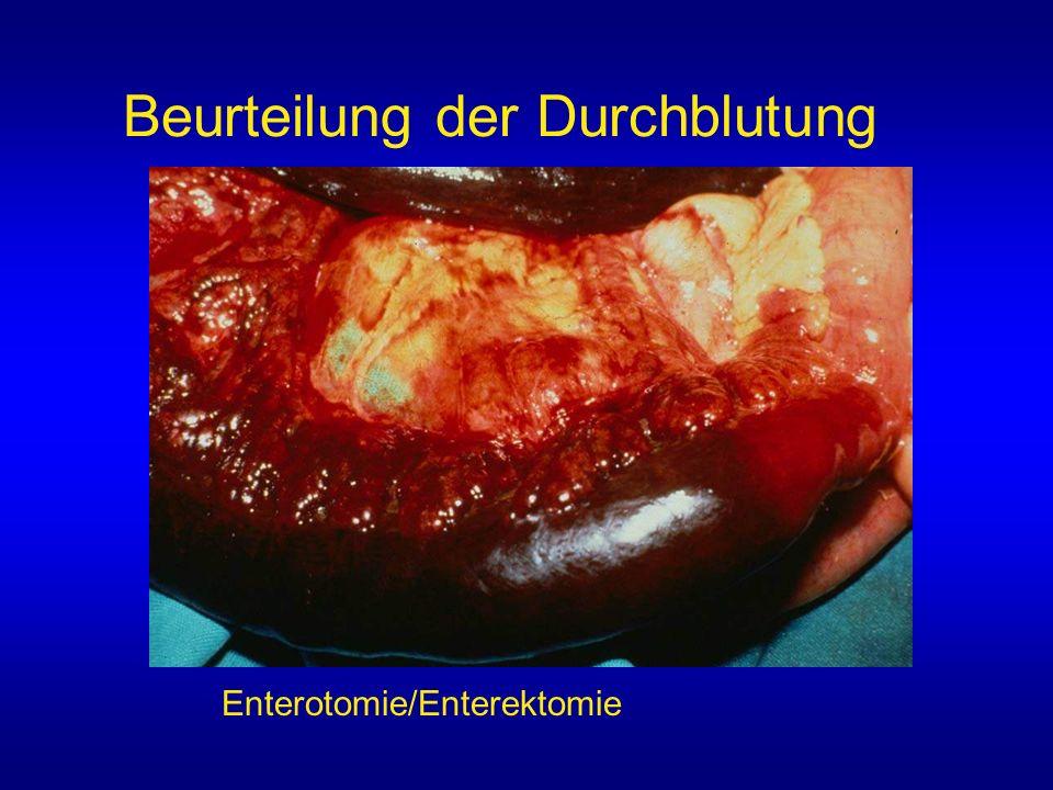 Beurteilung der Durchblutung