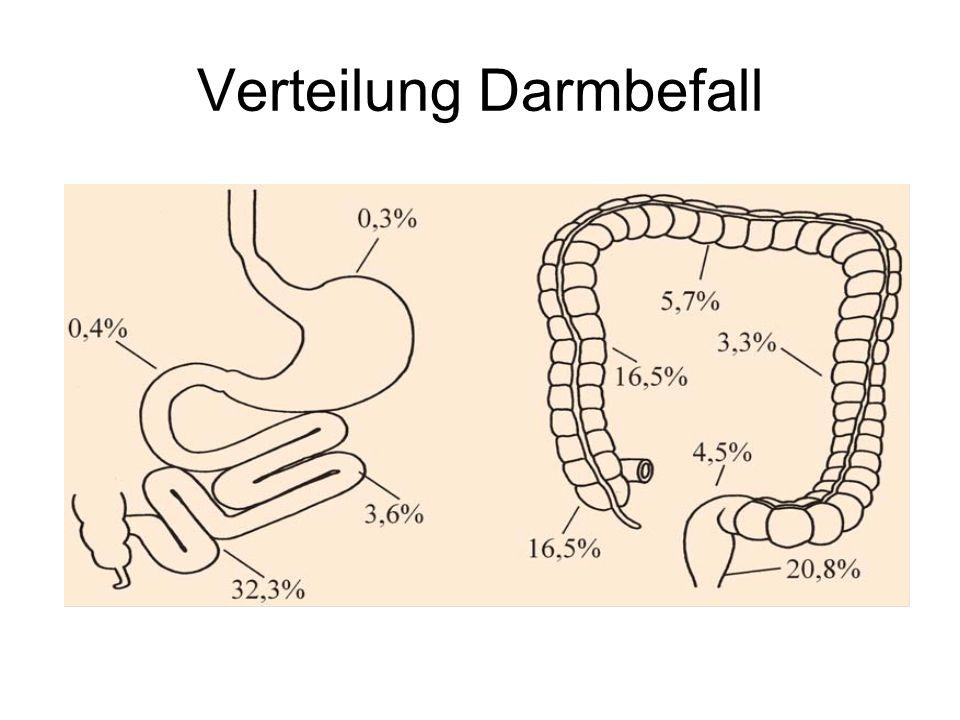 Verteilung Darmbefall