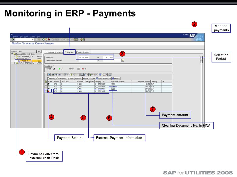 Monitoring in ERP - Payments