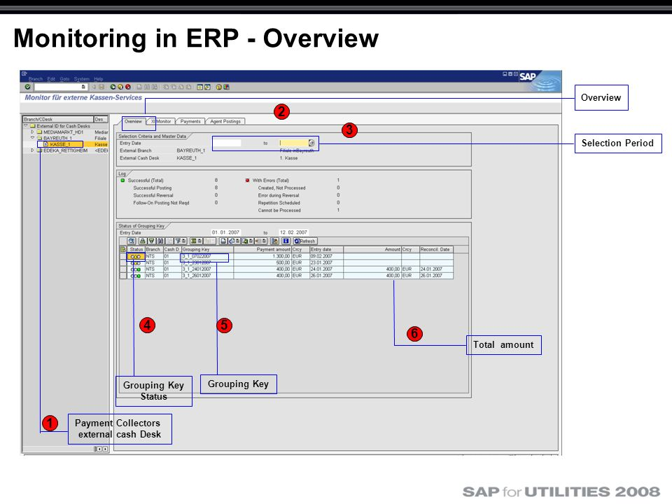 Monitoring in ERP - Overview