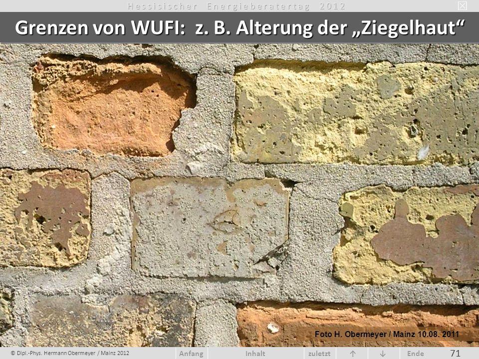 """Grenzen von WUFI: z. B. Alterung der """"Ziegelhaut"""
