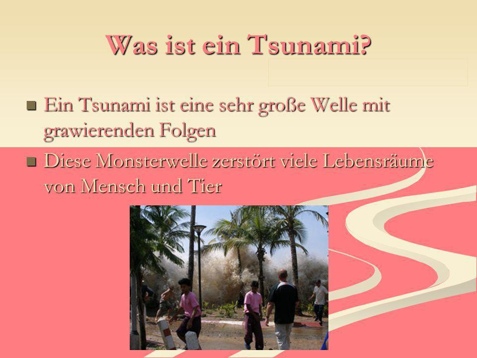 Was ist ein Tsunami Ein Tsunami ist eine sehr große Welle mit grawierenden Folgen.