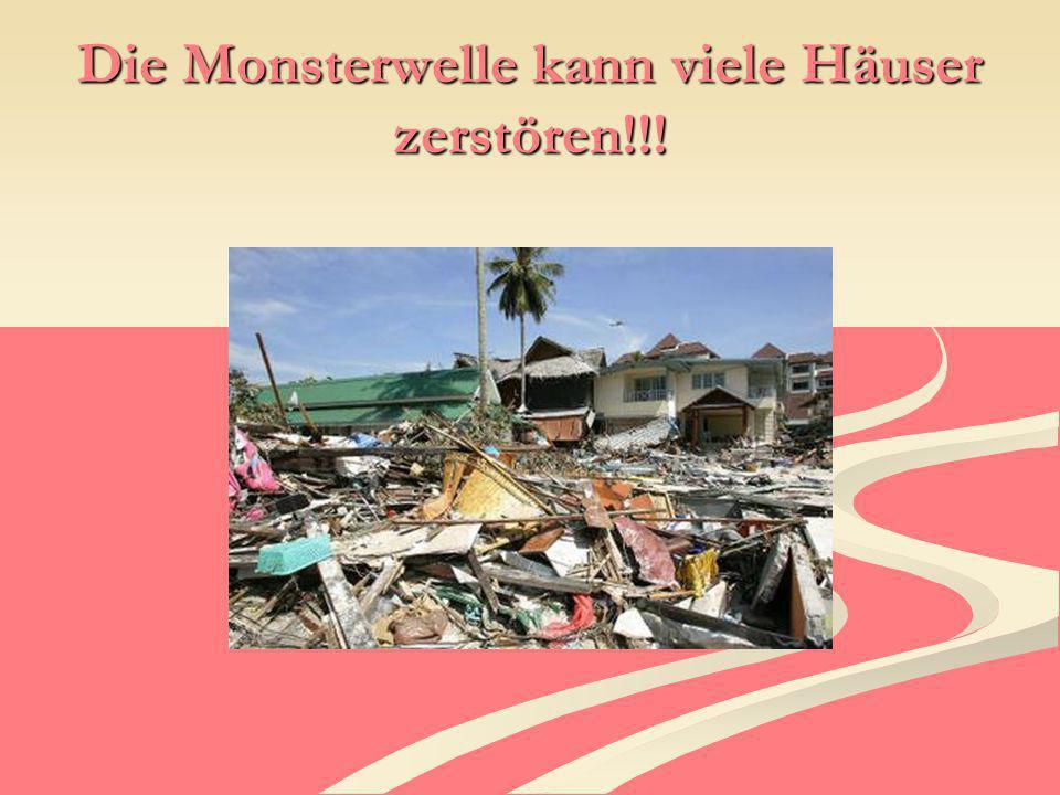 Die Monsterwelle kann viele Häuser zerstören!!!