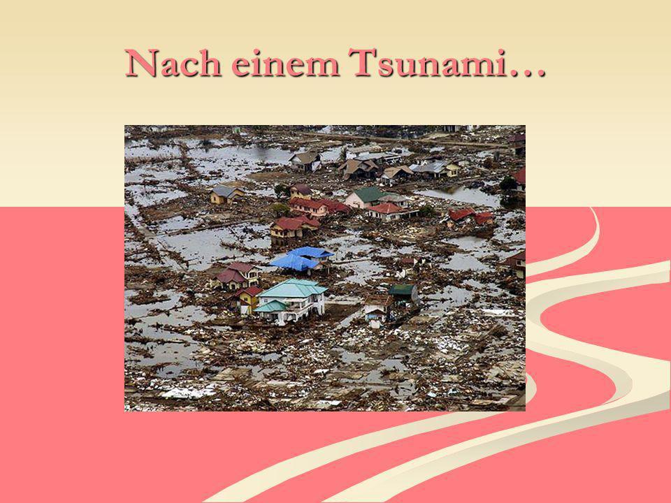 Nach einem Tsunami…