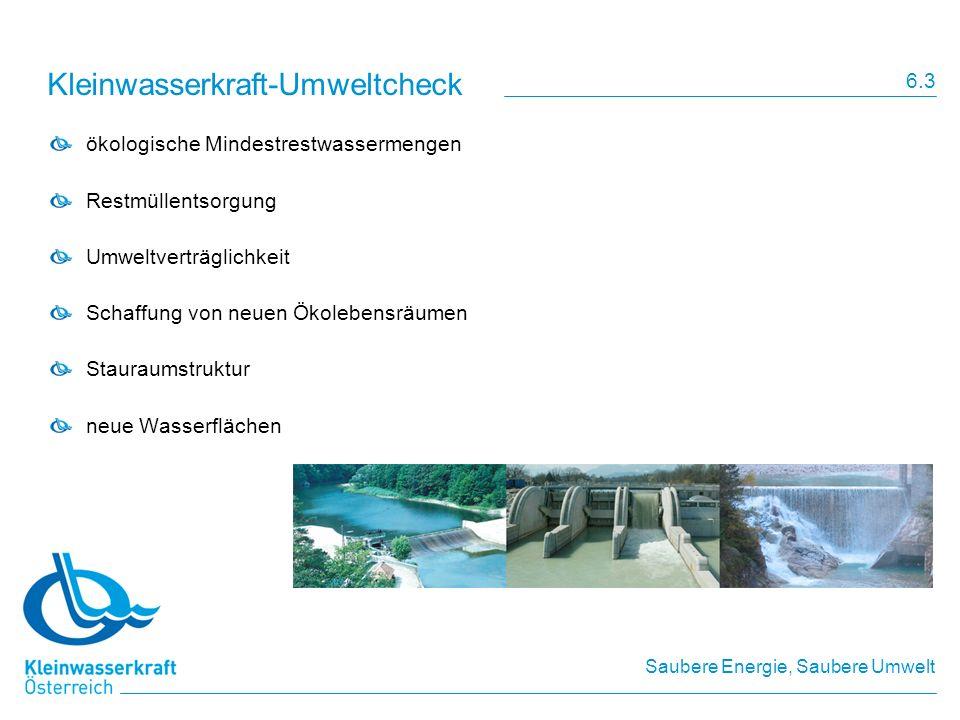 Kleinwasserkraft-Umweltcheck