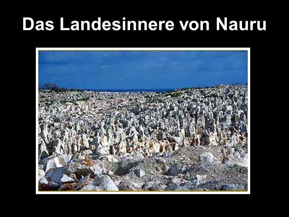 Das Landesinnere von Nauru