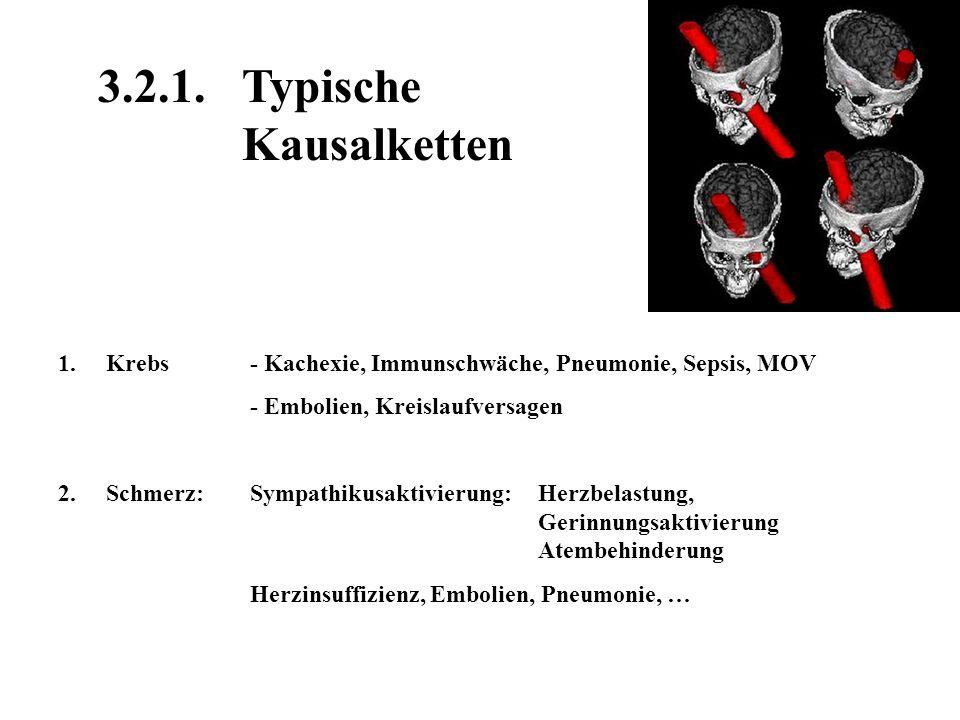 3.2.1. Typische Kausalketten