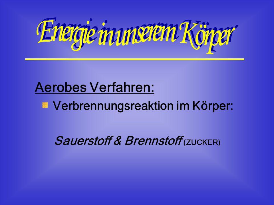 Verbrennungsreaktion im Körper: Sauerstoff & Brennstoff (ZUCKER)
