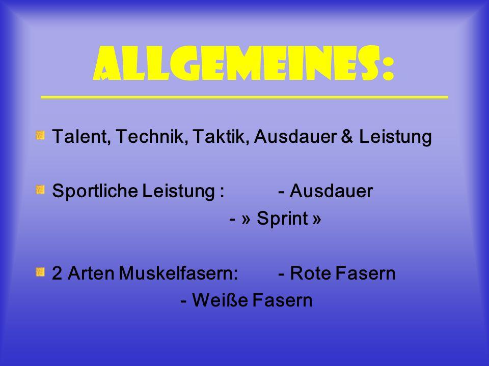 Allgemeines: Talent, Technik, Taktik, Ausdauer & Leistung