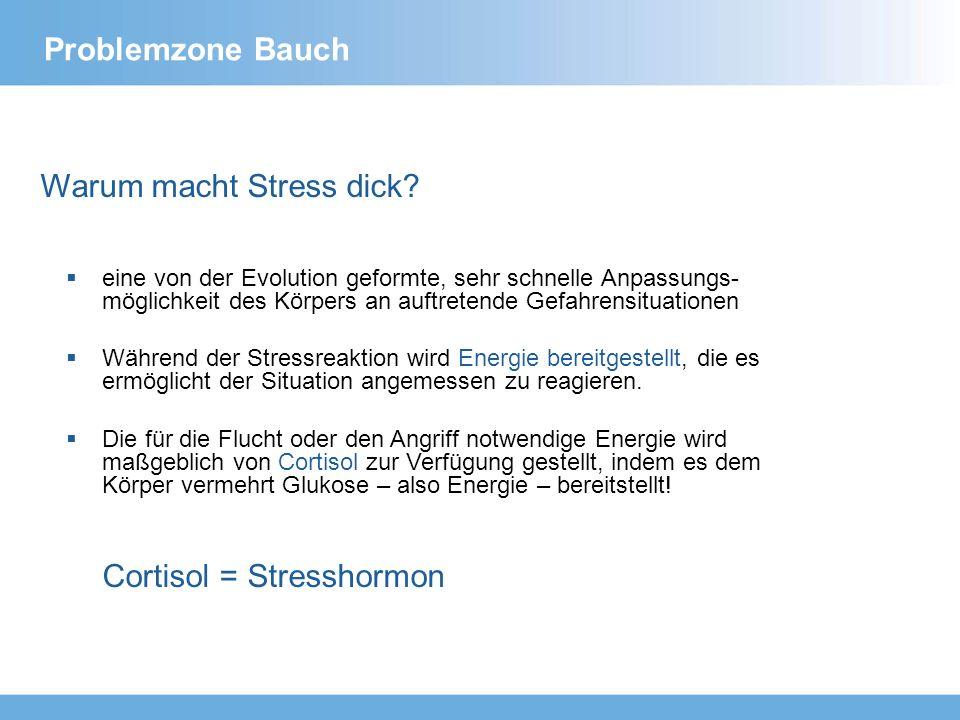 Warum macht Stress dick