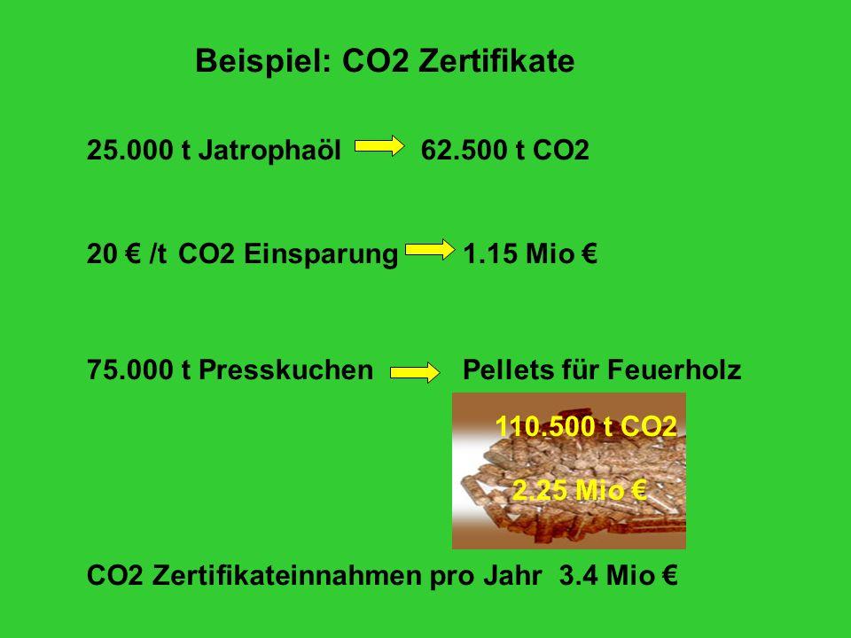Beispiel: CO2 Zertifikate