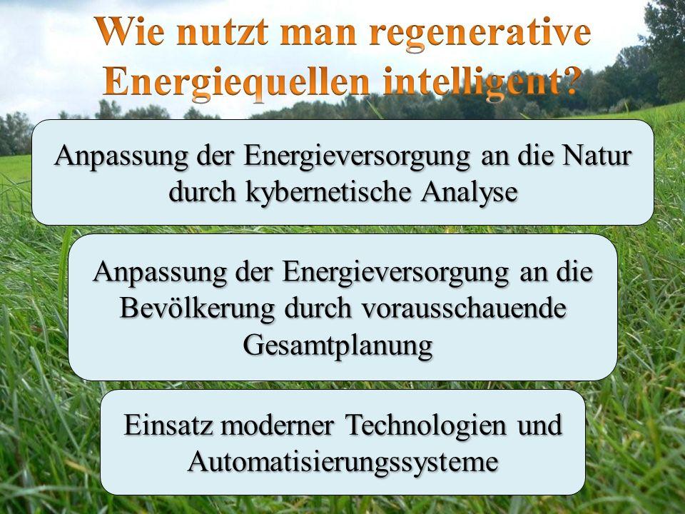 Wie nutzt man regenerative Energiequellen intelligent