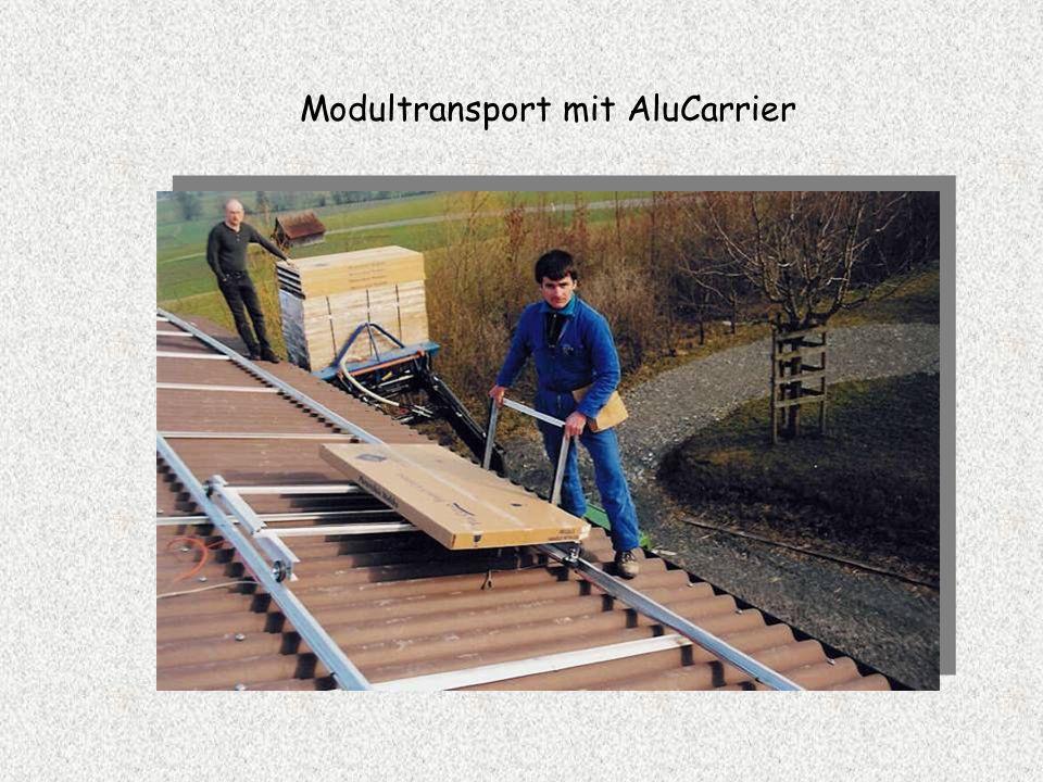 Modultransport mit AluCarrier