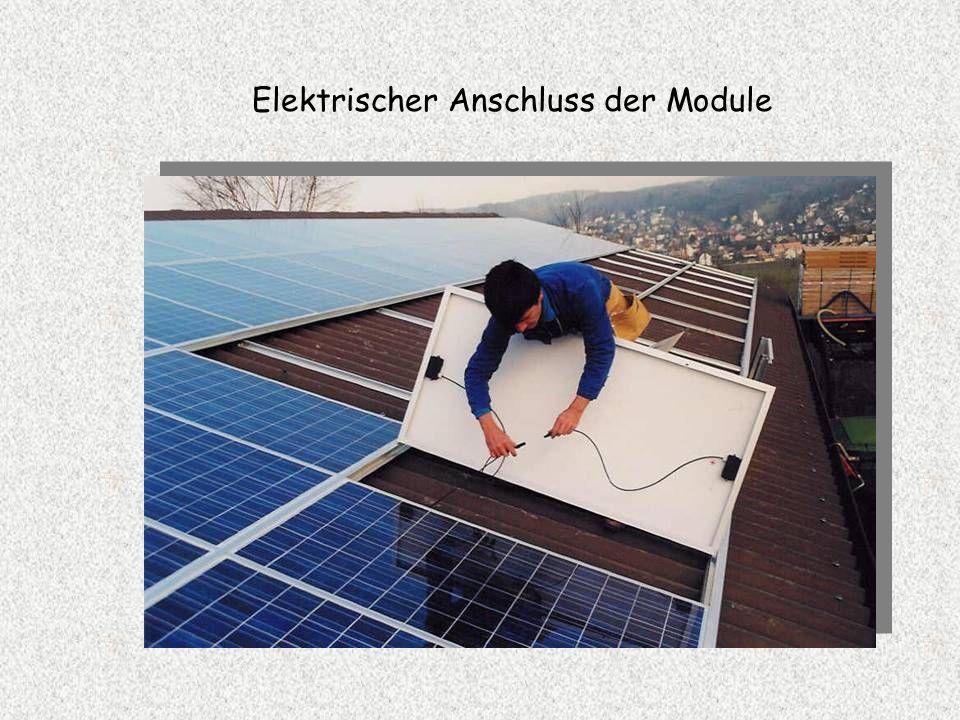 Elektrischer Anschluss der Module