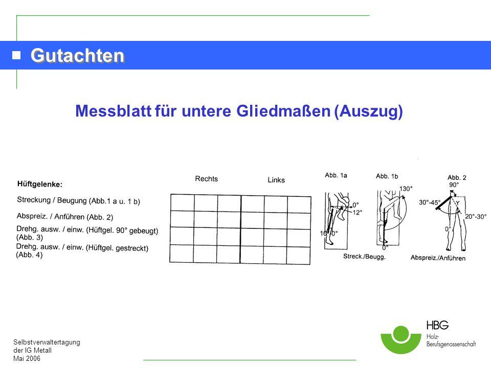 Messblatt für untere Gliedmaßen (Auszug)