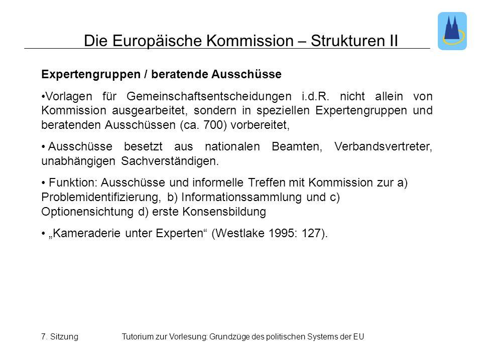 Die Europäische Kommission – Strukturen II