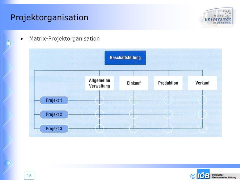 Projektorganisation Matrix-Projektorganisation