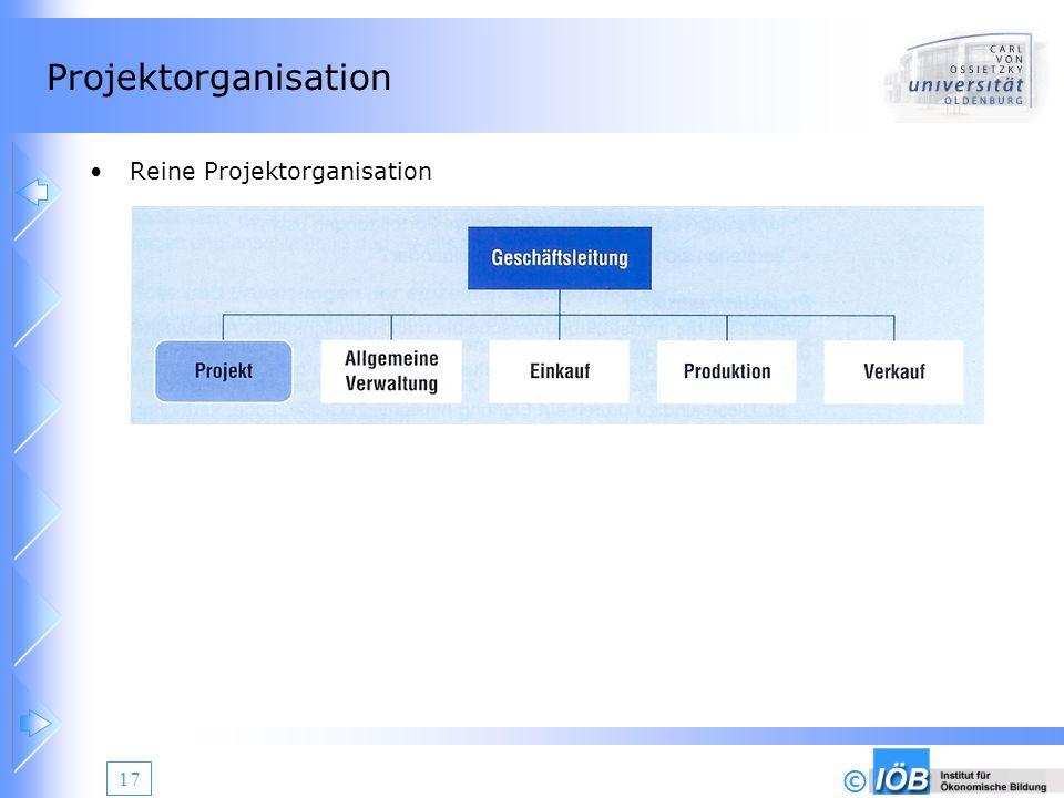 Projektorganisation Reine Projektorganisation