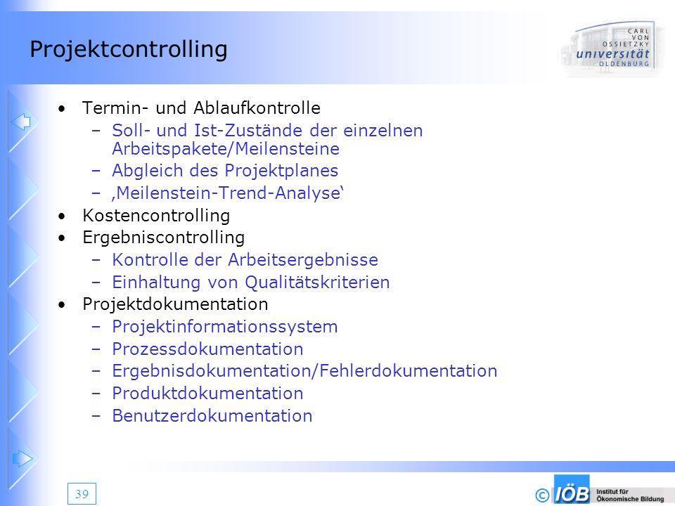 Projektcontrolling Termin- und Ablaufkontrolle