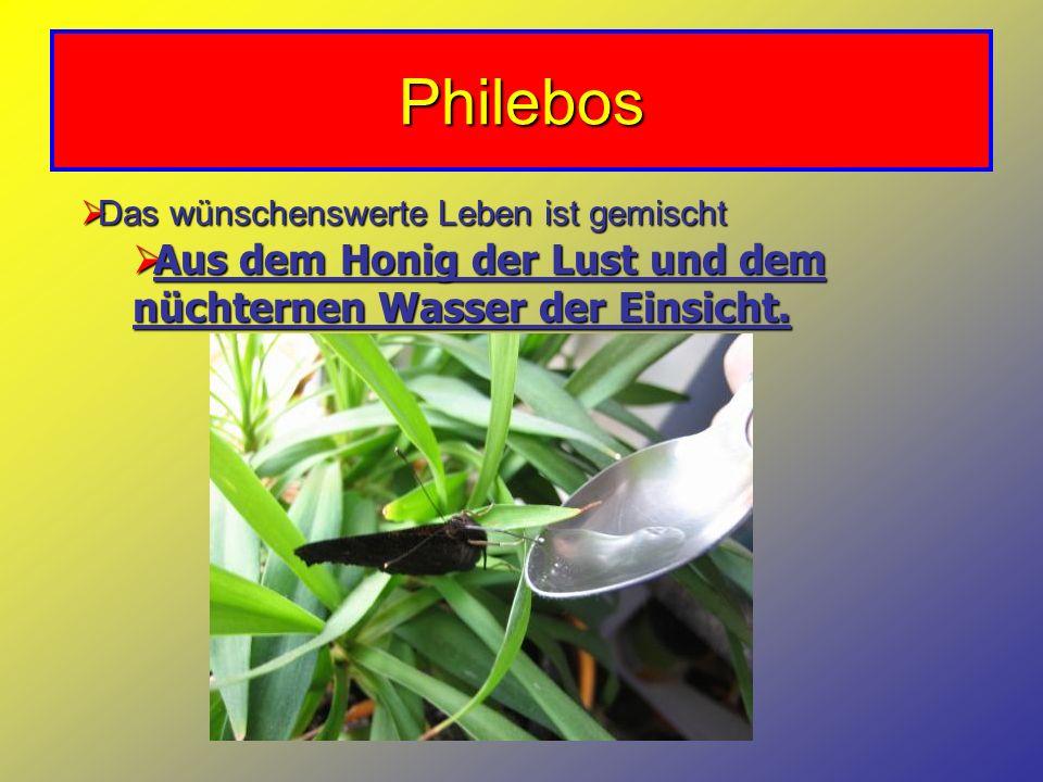 Philebos Das wünschenswerte Leben ist gemischt.