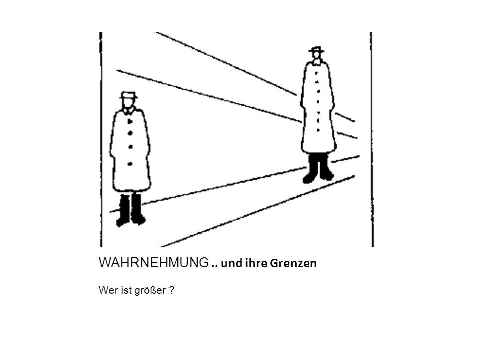 WAHRNEHMUNG .. und ihre Grenzen
