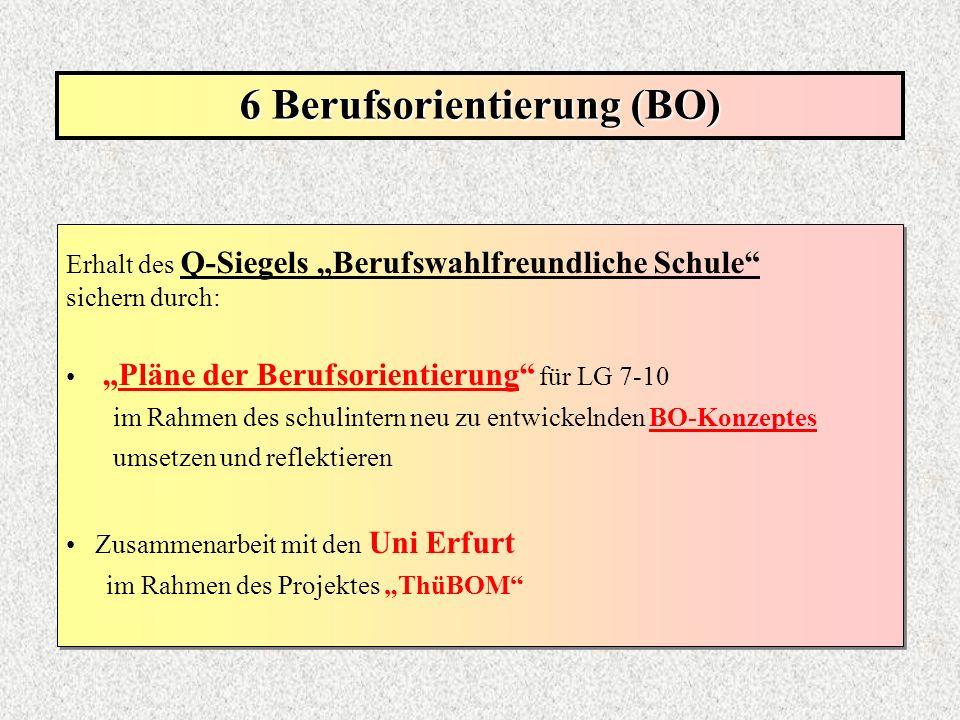 6 Berufsorientierung (BO)