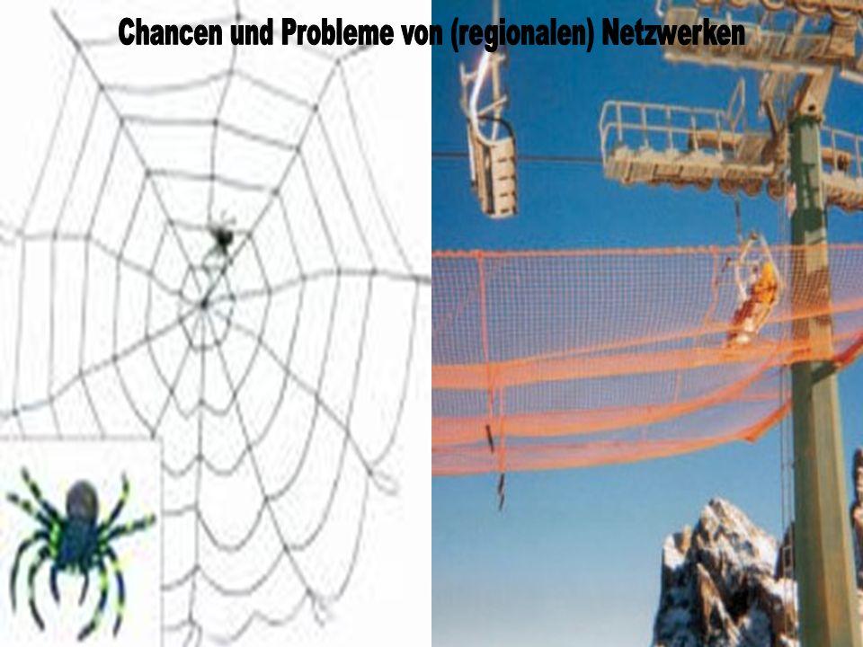 Chancen und Probleme von (regionalen) Netzwerken